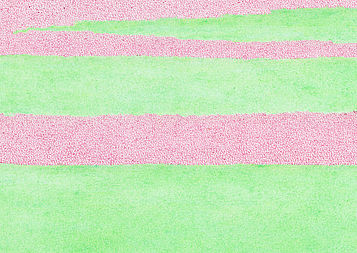 Thilo Westermann, Magenta - Leaf Green (detail) Color pencil drawing