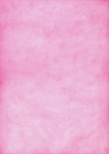 Thilo Westermann, Fuchsia, 2011 Color pencil drawing Singapore